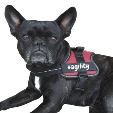 #agility Klettlogo