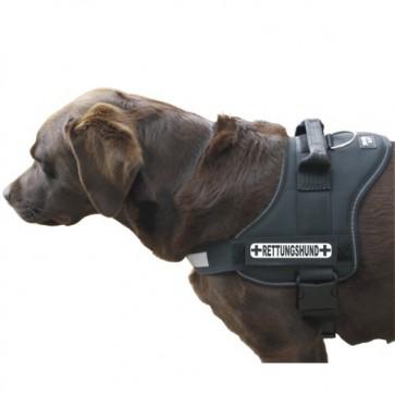 Rettungshund Klettlogo
