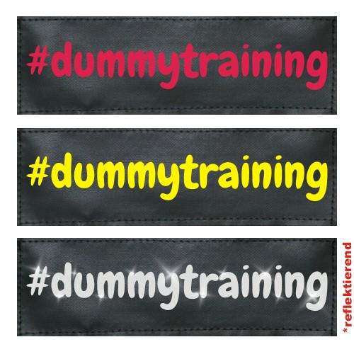 #dummytraining Klettlogo