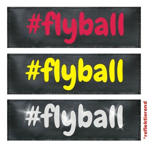 #flyball Klettlogo