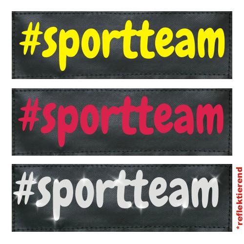 #sportteam Klettlogo